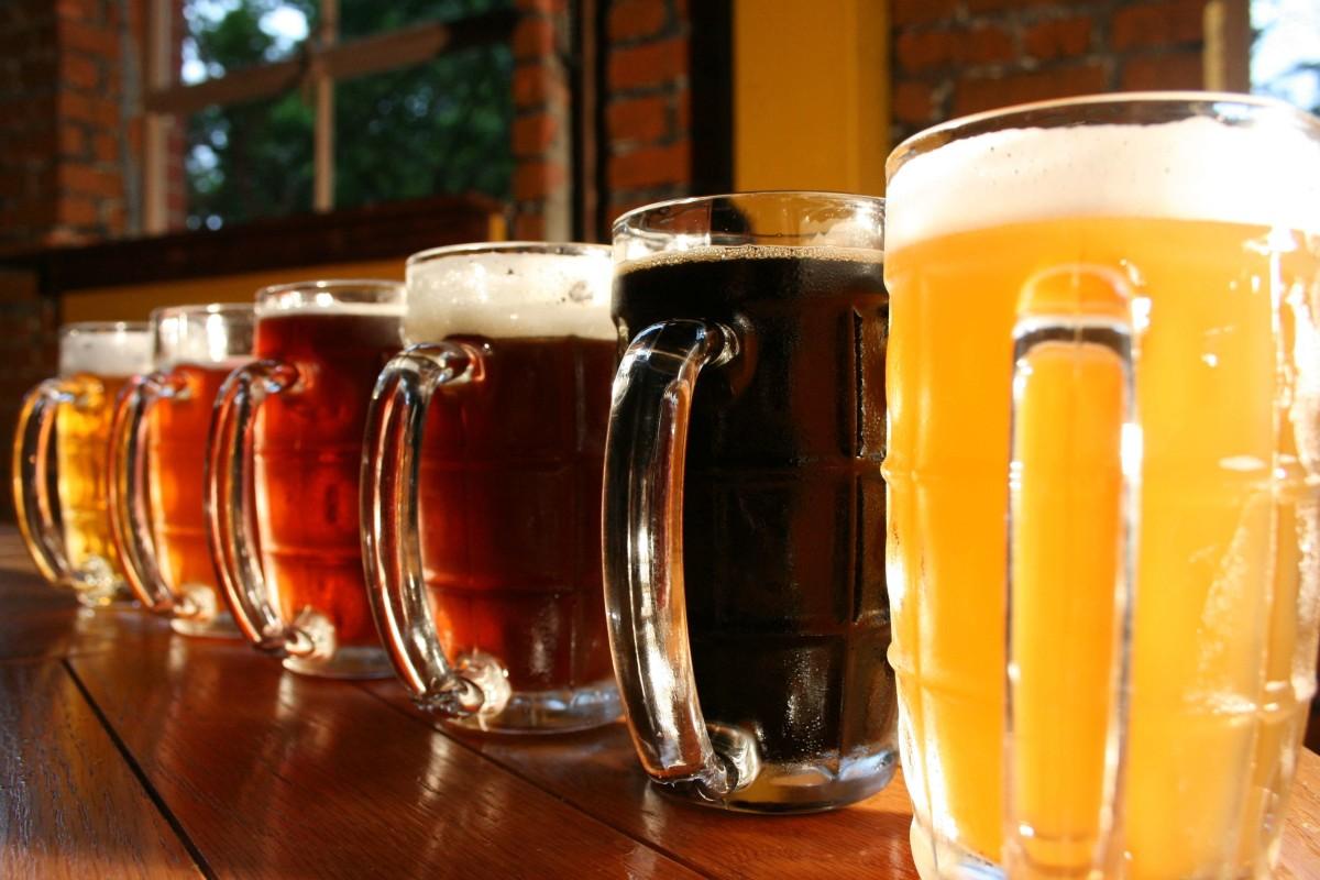 Conheça os diferentes tipos de cerveja que você pode produzir